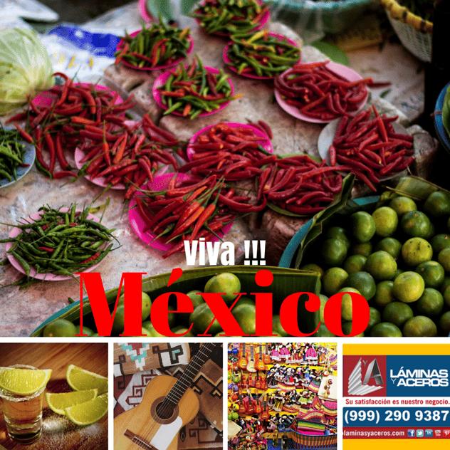 laminas y aceros Viva Mexico (11).png