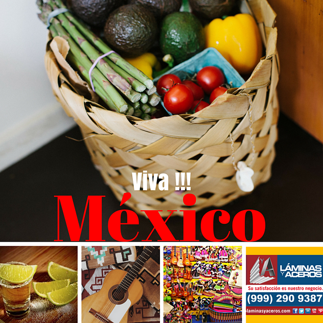 laminas y aceros Viva Mexico (12).png