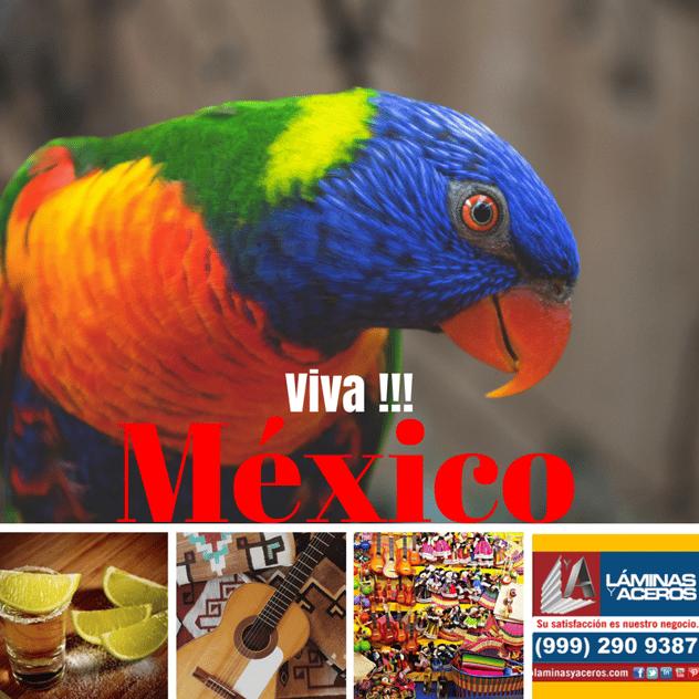 laminas y aceros Viva Mexico (14).png