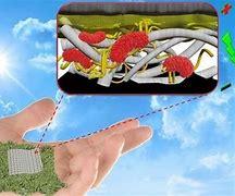 LYA OIP pila de papel biodegradable 3. jpg