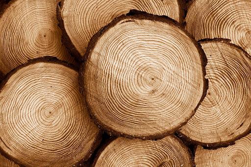 Láminas y aceros madera